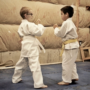 homeschool martial arts class